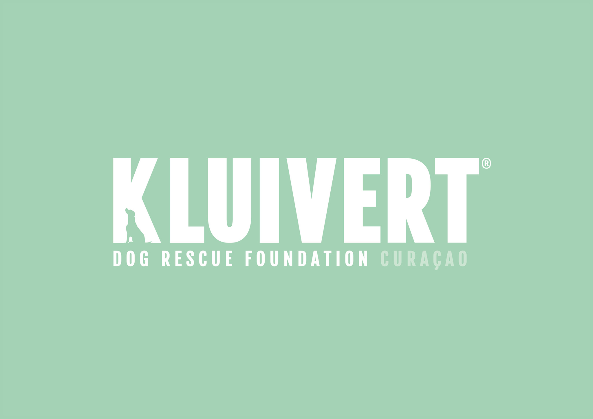Kluivert Dog Rescue Foundation Curacao